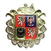 Odznak na čepici SDH - čtvrcený